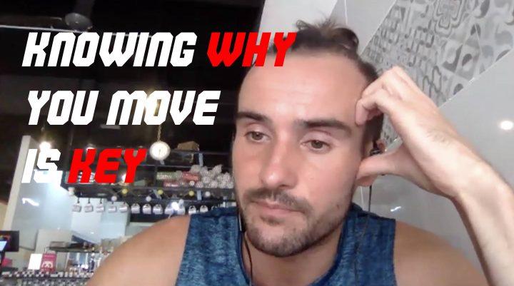 Individual tactics in futsal: Why do you move in futsal?